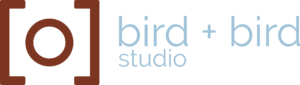 Bird + Bird Studio Logo